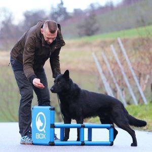 sporthund_qboxsteh